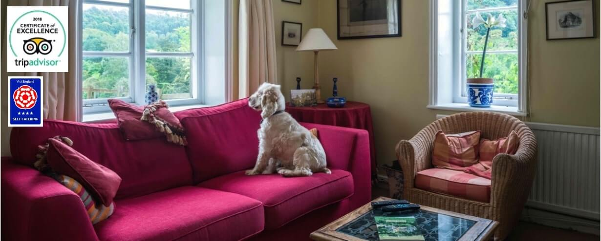 Cottages Slider Marlings End interior dog | Owlpen Manor Cotswold Cottages | Self-catering Holiday Cottages in the Cotswold